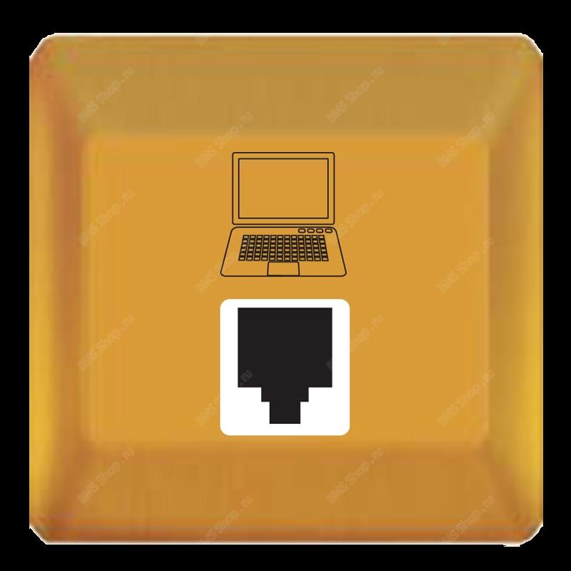 Телефонная или сетевая розеточная панель серии Edge для гостиничного номера.
